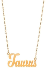 Ana Accessories Taurus Necklace - Front cropped