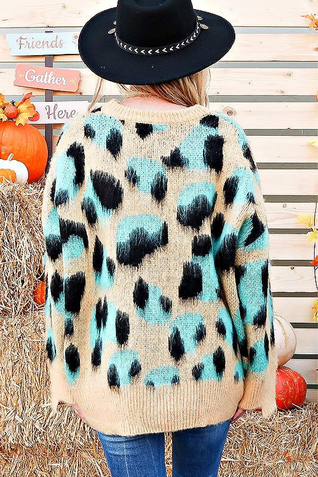 And the Why Animal-Print Cozy Sweater - Front Full Image