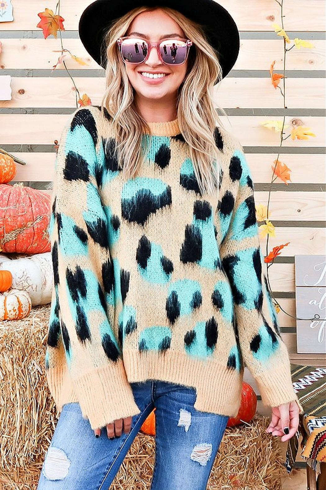 And the Why Animal-Print Cozy Sweater - Main Image