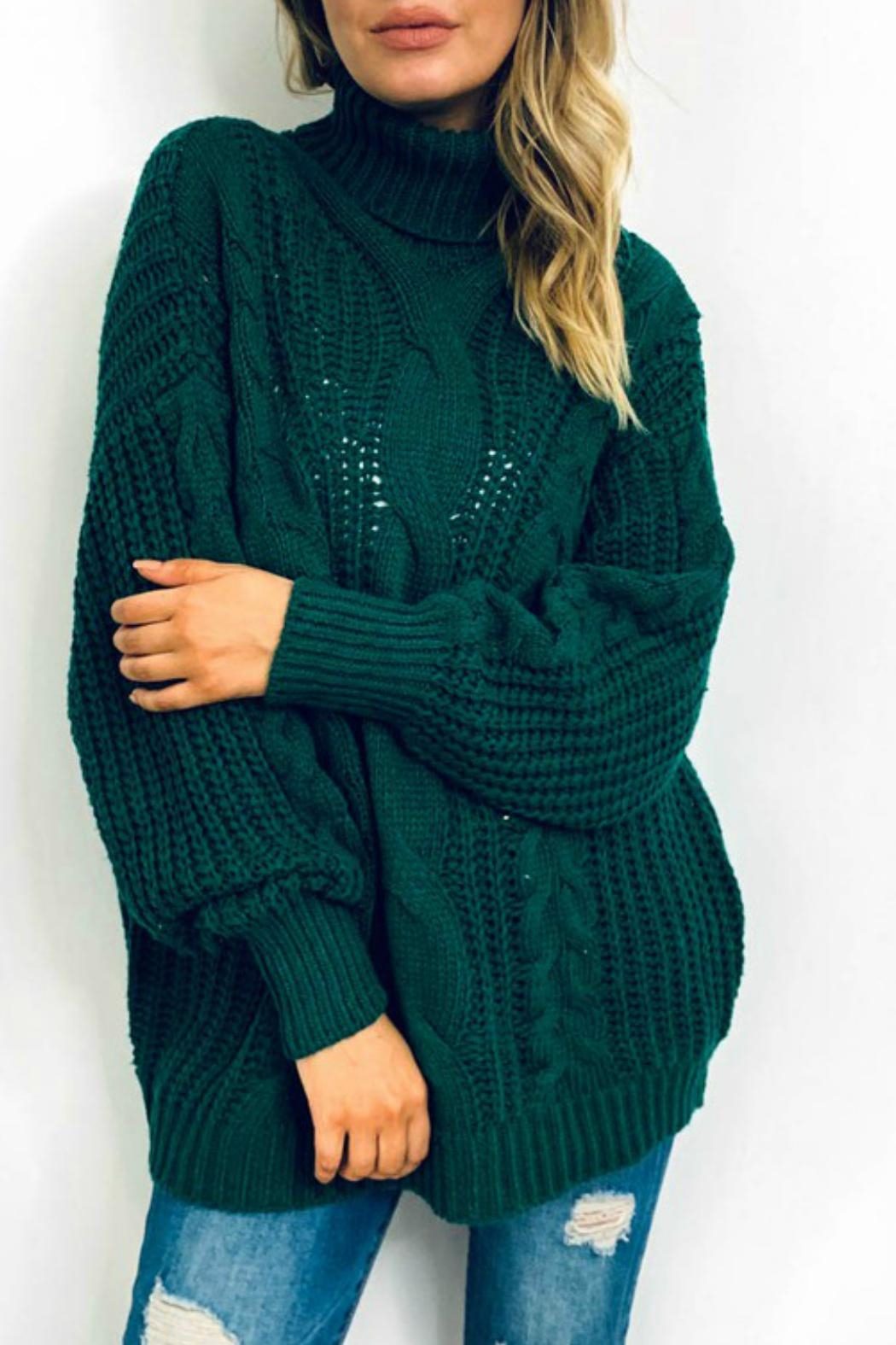 And the Why Jacelyn Turtleneck Sweater - Front Full Image