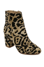Band Of Gypsies Andrea Leopard Booties - Front cropped