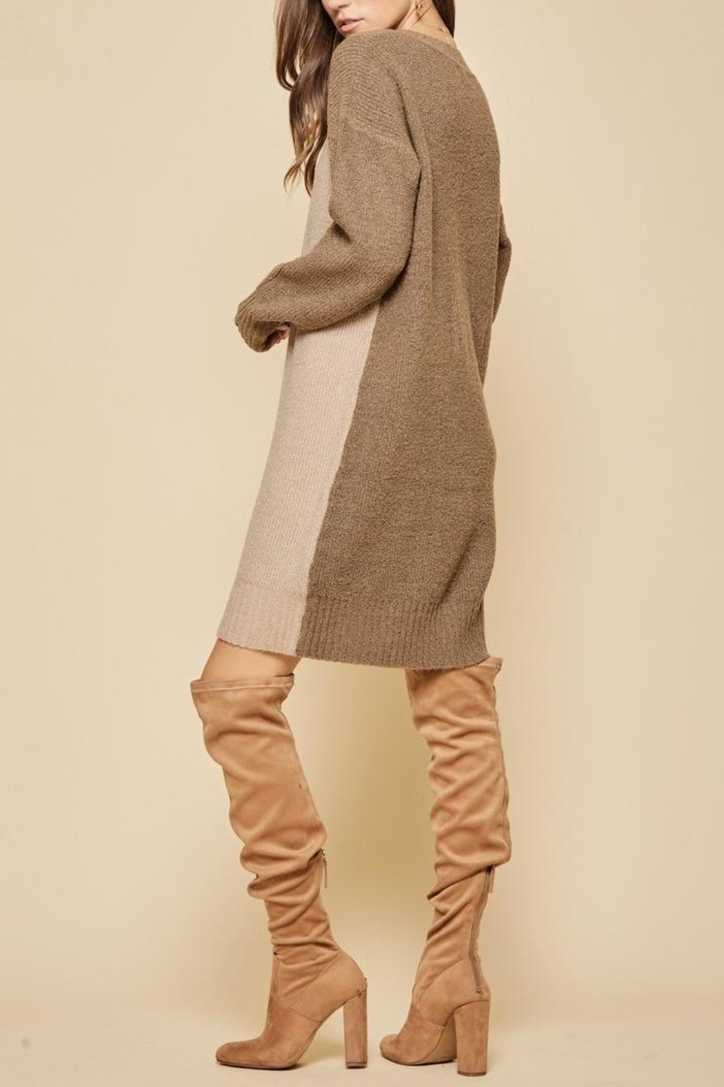 Andree by Unit Colorblock Sweater Dress - Front Full Image