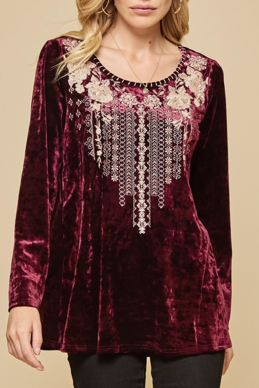 Andree by Unit Embroidered Velvet Top - Main Image