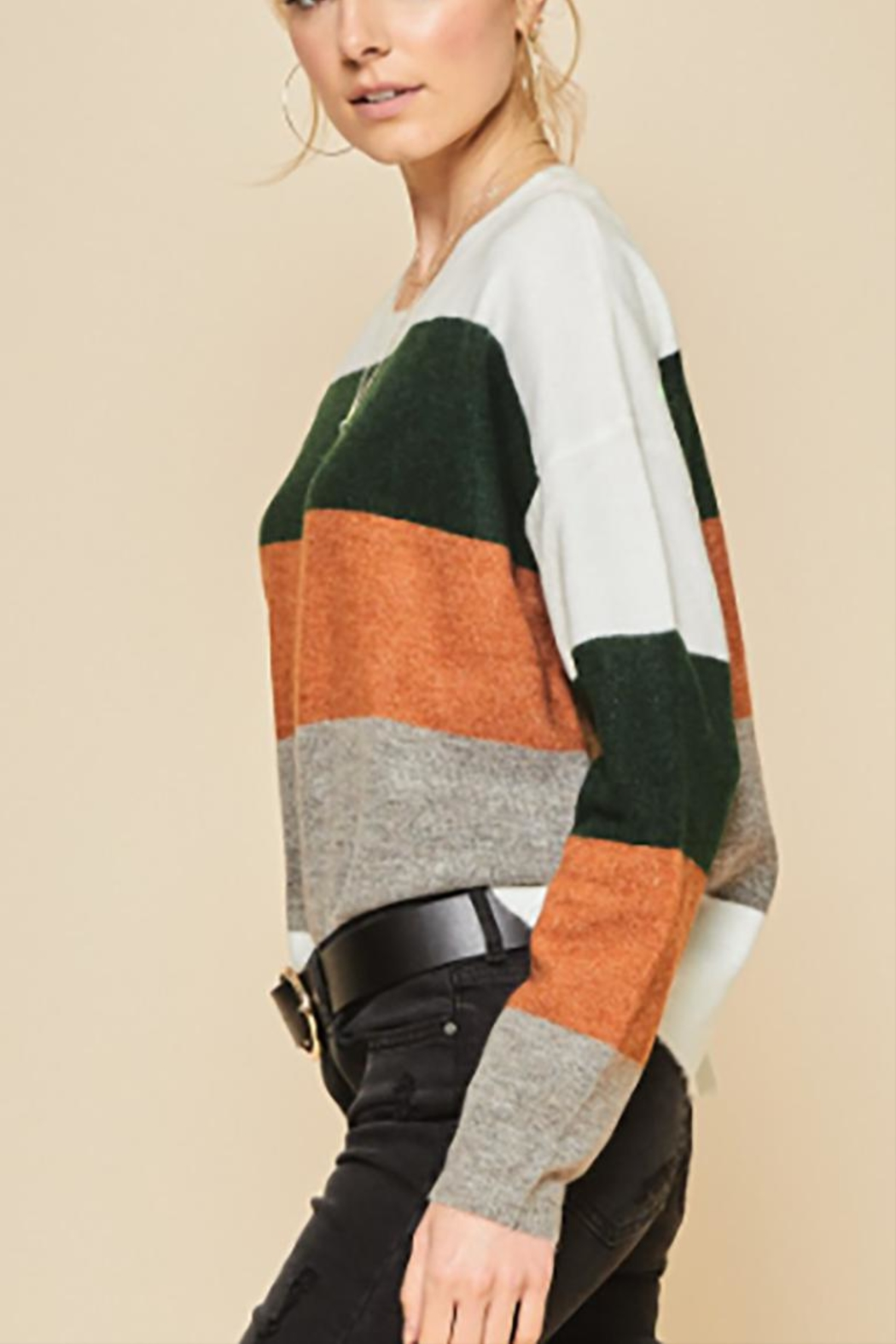 Andree by Unit Plus Colorblock Sweater - Back Cropped Image