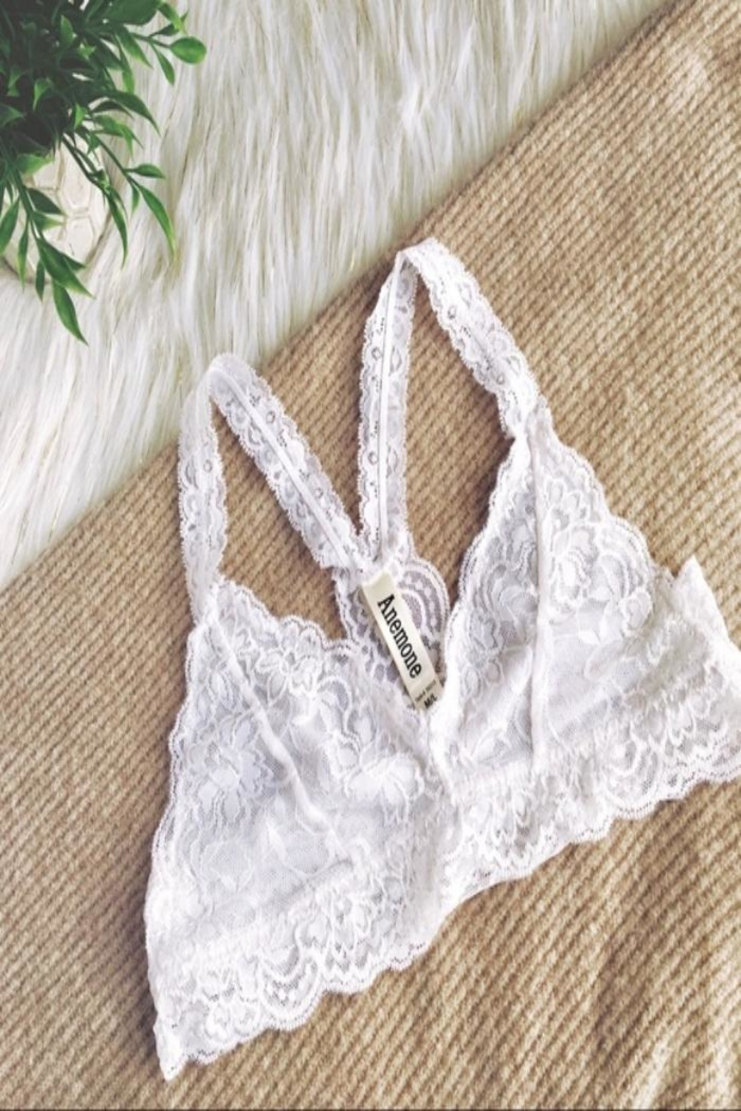Anemone White Bralette - Front Cropped Image