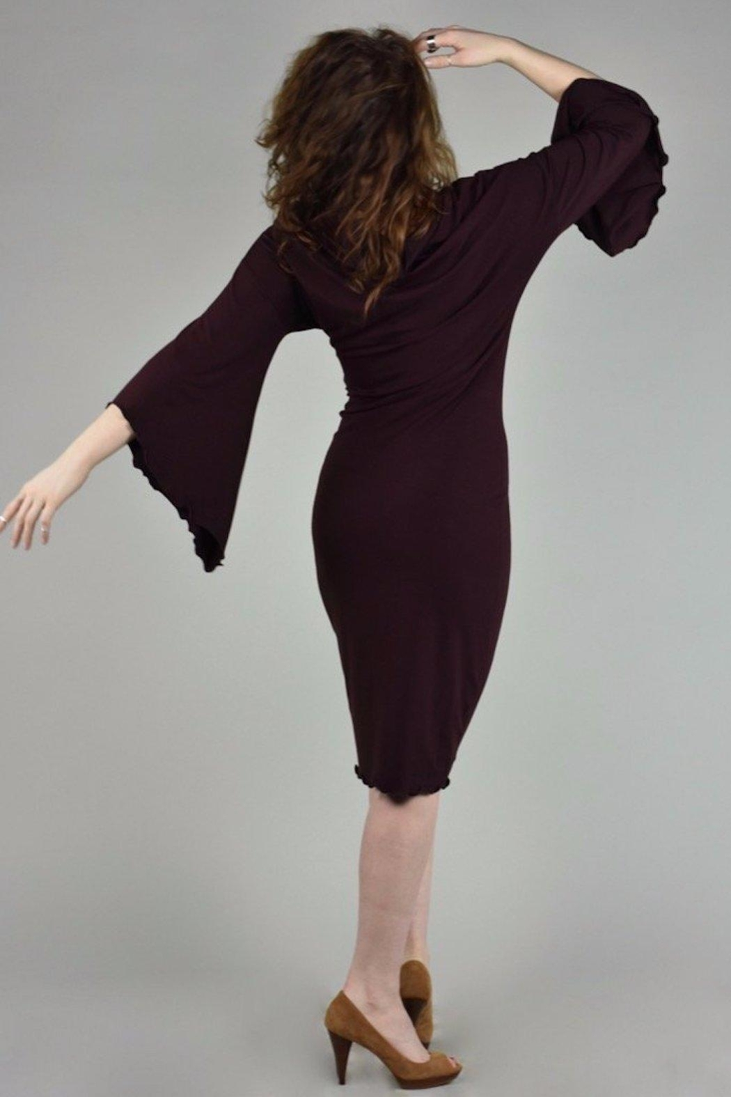 Angelrox Medici Bell-Sleeve Dress - Front Full Image