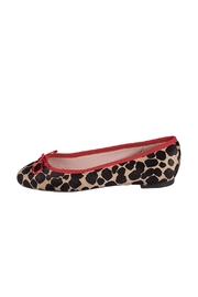Pascucci Animal Print Ballerina - Product Mini Image