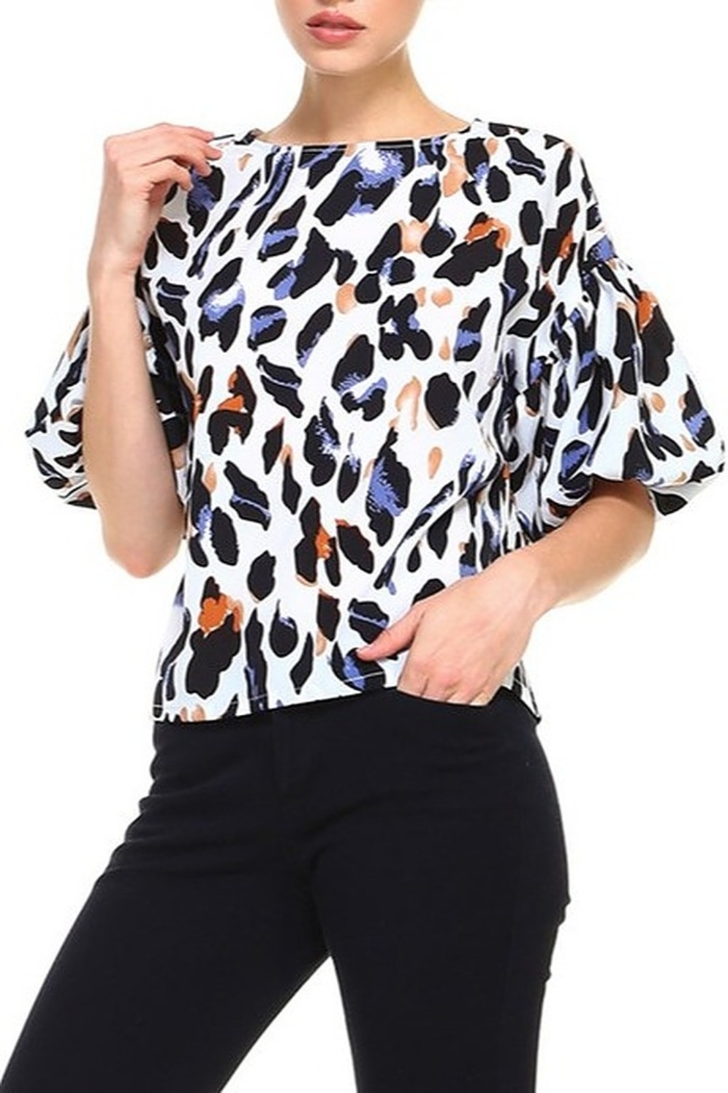 TCEC Animal Print Balloon Sleeve Top - Front Cropped Image