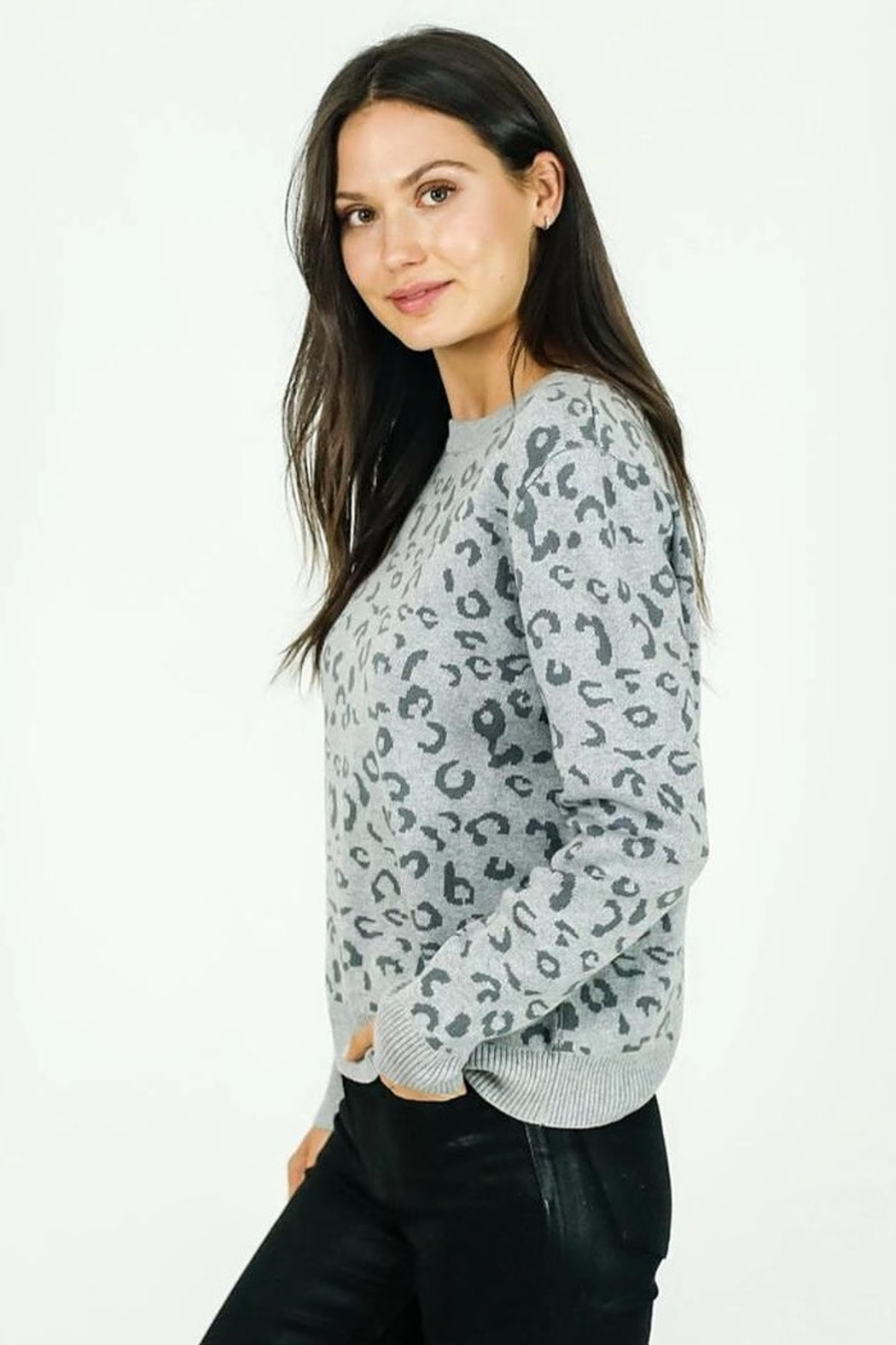 Six Fifty Animal Print Sweater - Front Cropped Image