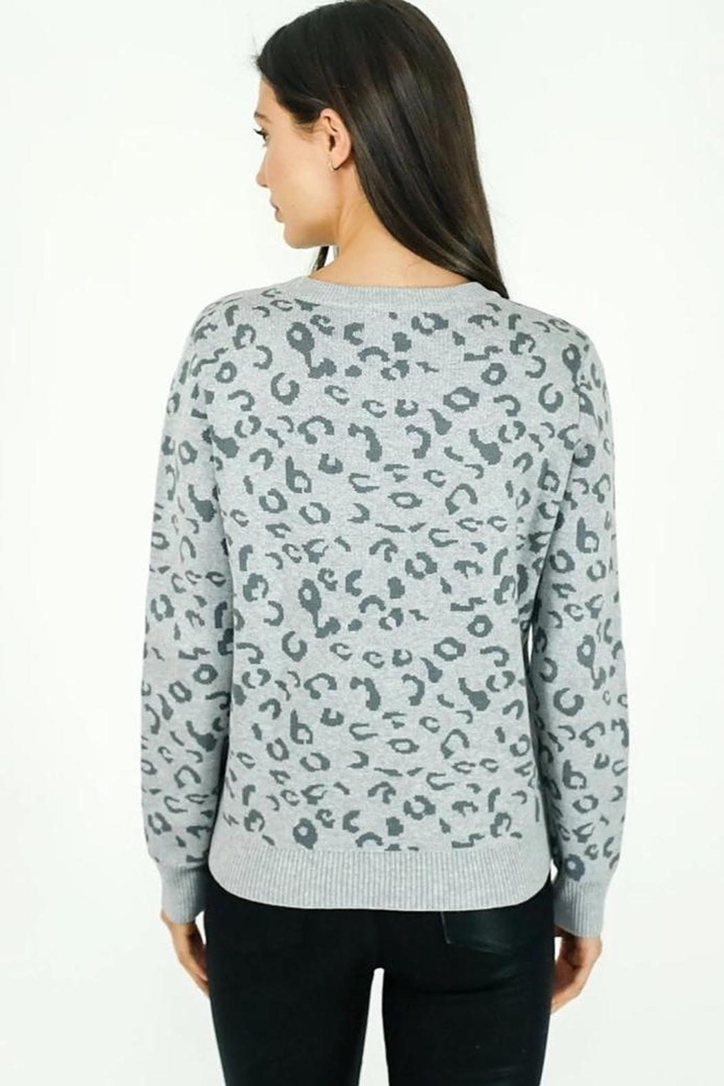 Six Fifty Animal Print Sweater - Front Full Image