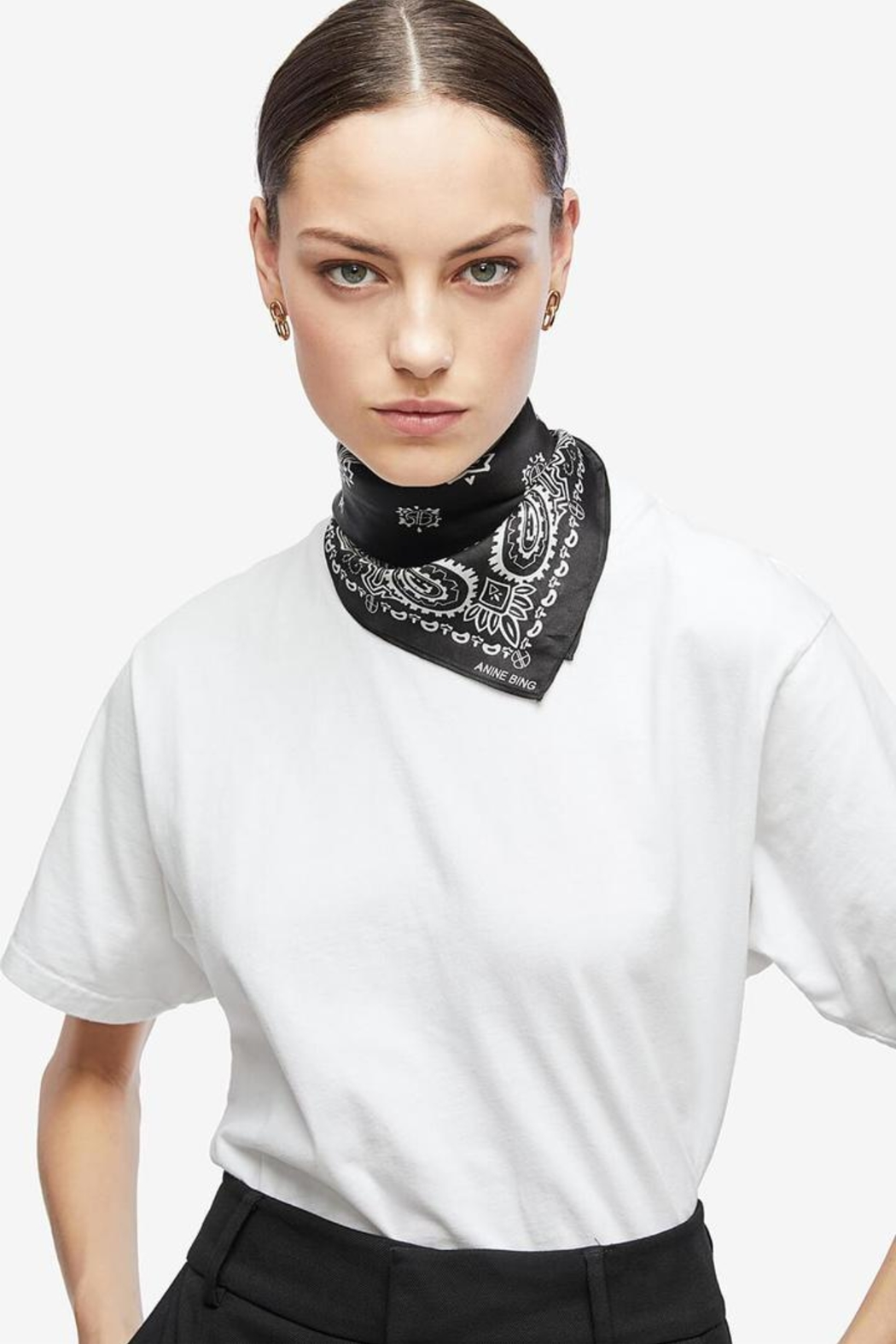 Anine Bing Arizona Scarf - Side Cropped Image