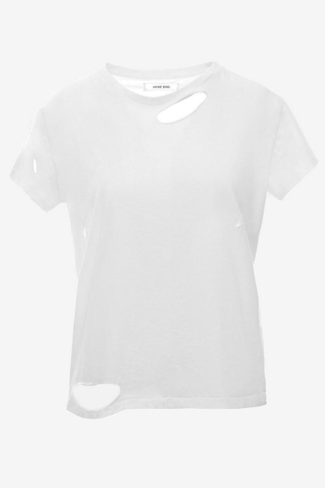 Anine Bing Distressed T-Shirt - Back Cropped Image