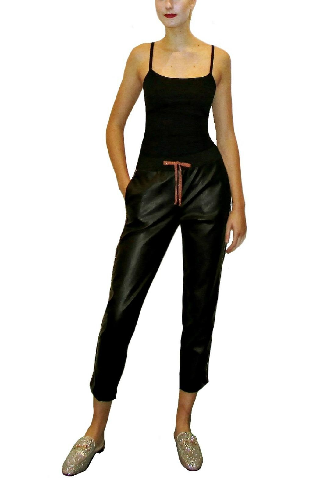 Anisya Black Faux Leather - Side Cropped Image