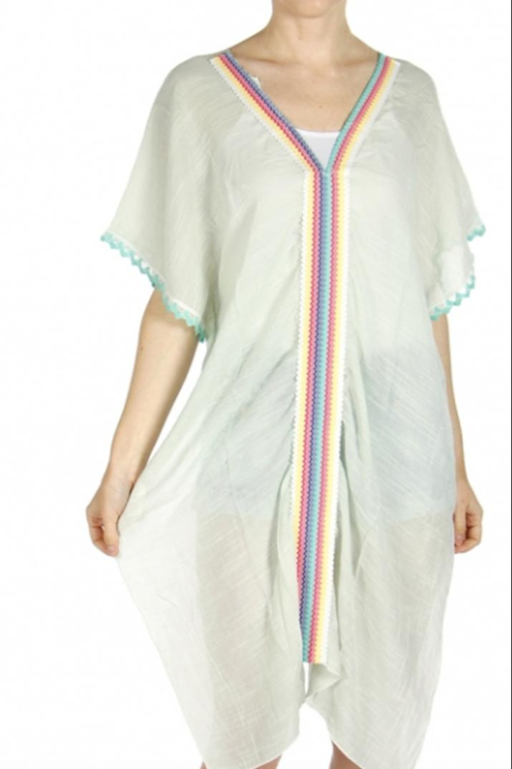 Anne Woodman Embroidered Beach Caftan - Main Image