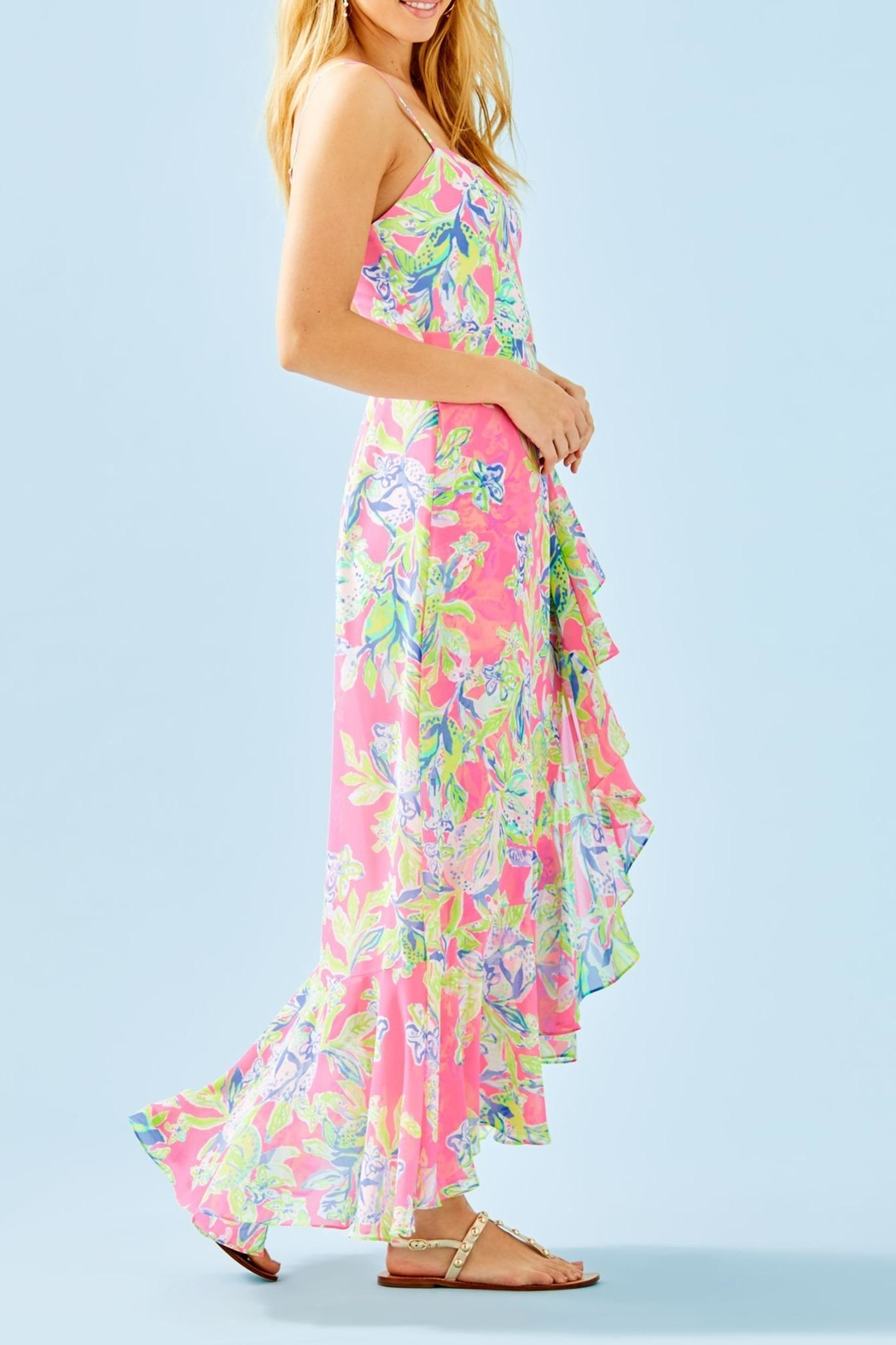 Lilly Pulitzer Anni Maxi Dress - Side Cropped Image