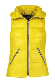 Anorak Puffer Silver Vest - Front cropped
