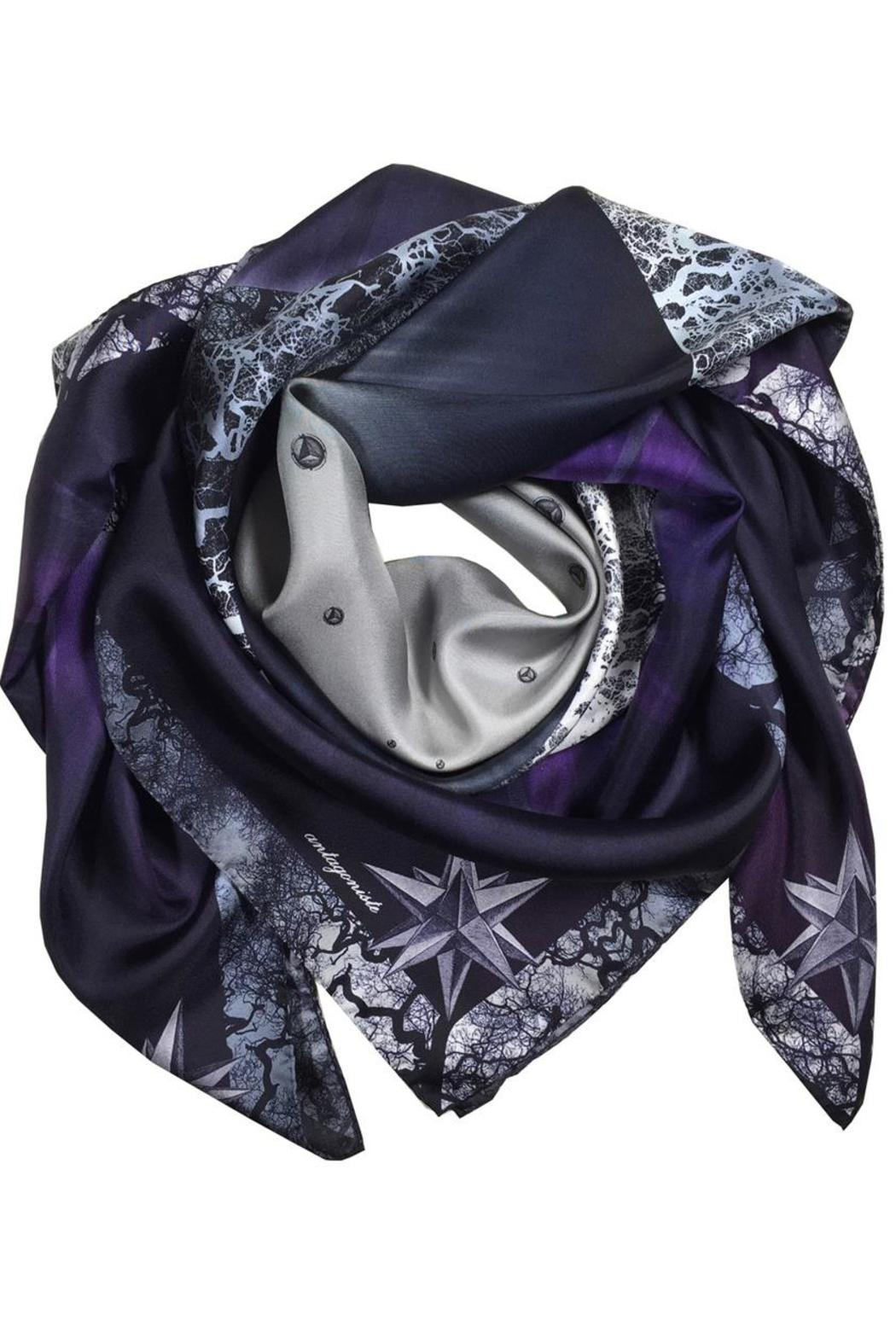 ANTAGONISTE Silk Scarf - Front Cropped Image
