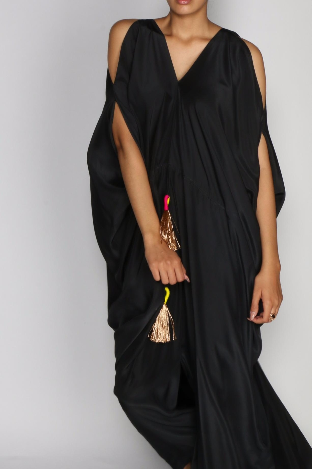 Anupamaa Black Tusha Dress - Back Cropped Image