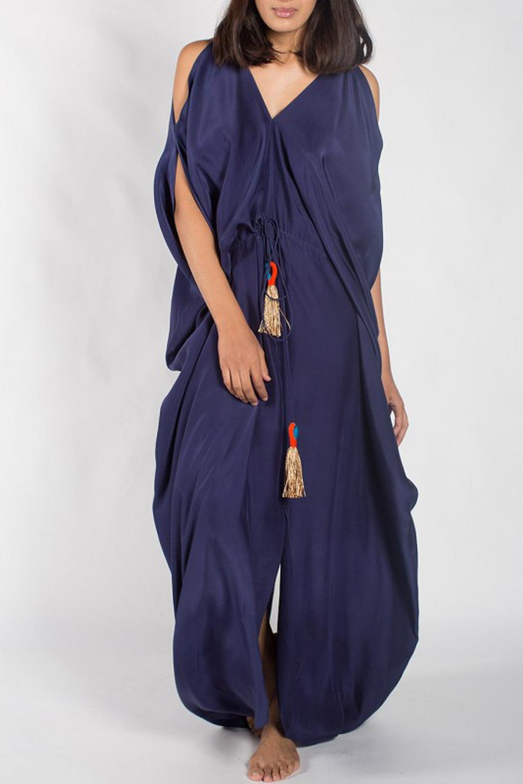 Anupamaa Navy Tusha Dress - Front Cropped Image
