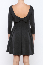 Apricity Charcoal December Dress - Back cropped