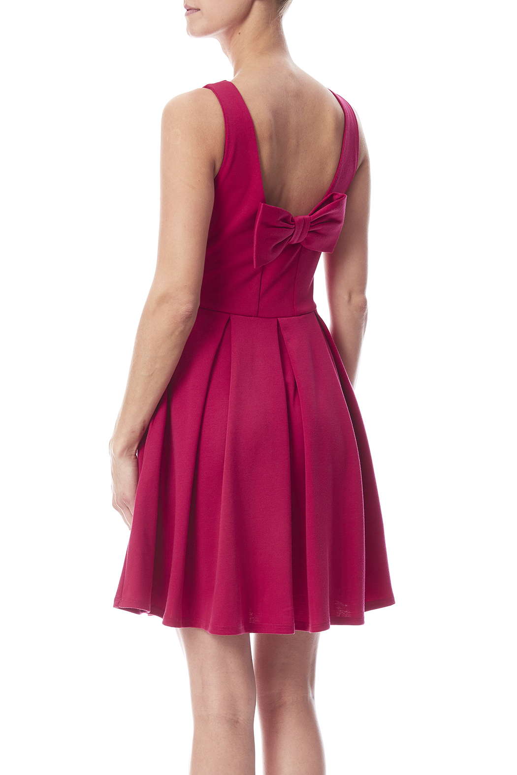 Apricity January Dress Fuchsia - Back Cropped Image
