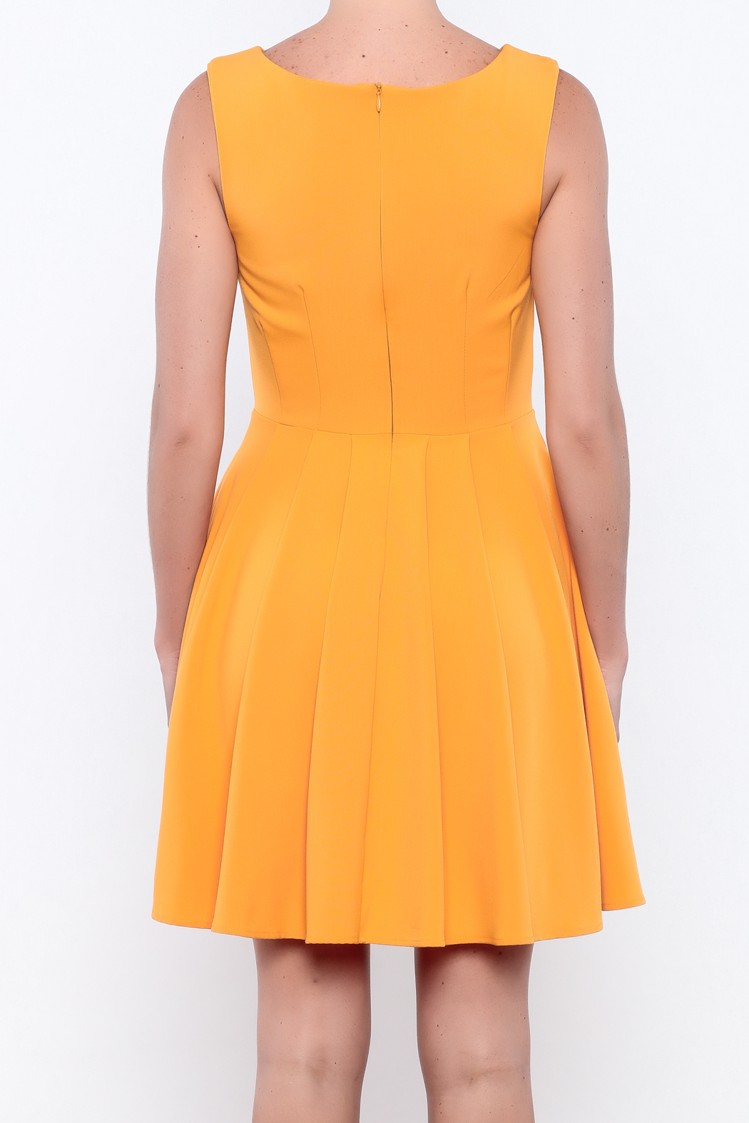 Apricity Mustard Sunday Dress - Back Cropped Image