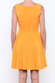 Apricity Mustard Sunday Dress - Back cropped