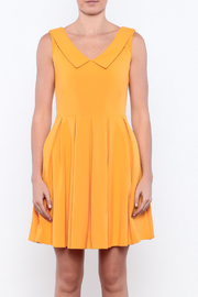 Apricity Mustard Sunday Dress - Side cropped