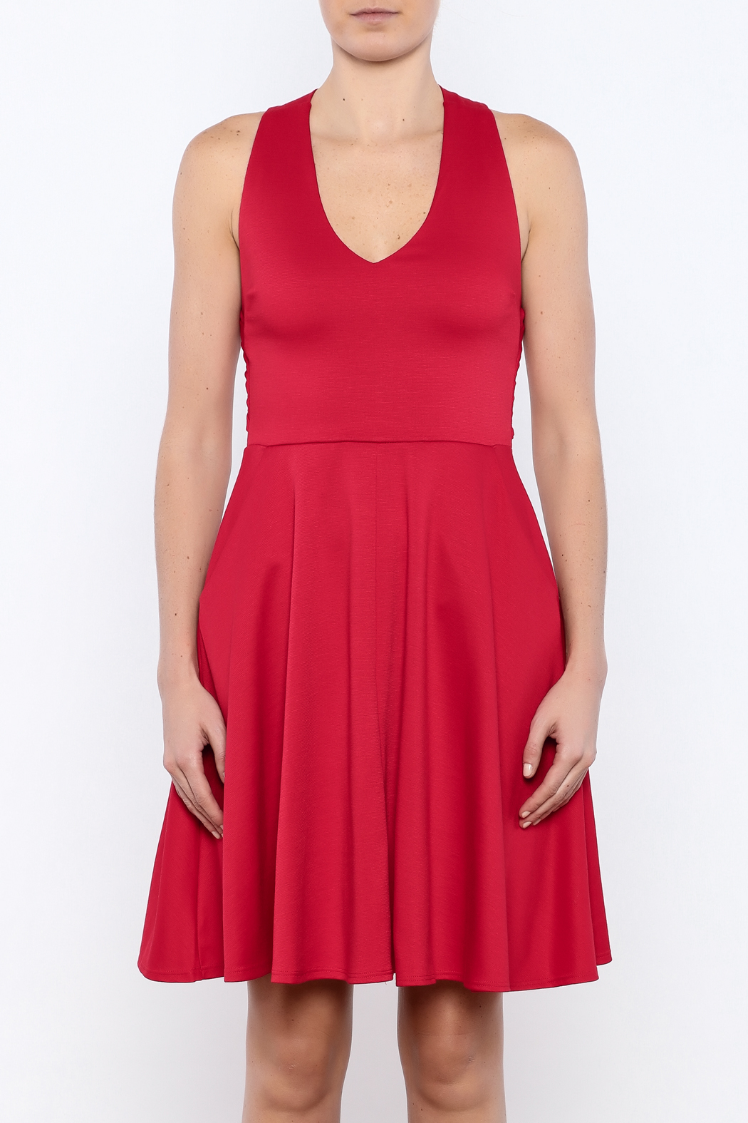 Apricity Red Solstice Dress - Side Cropped Image