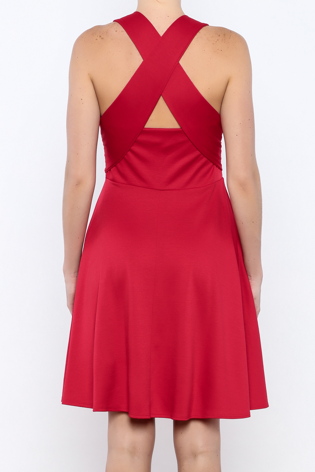 Apricity Red Solstice Dress - Back Cropped Image