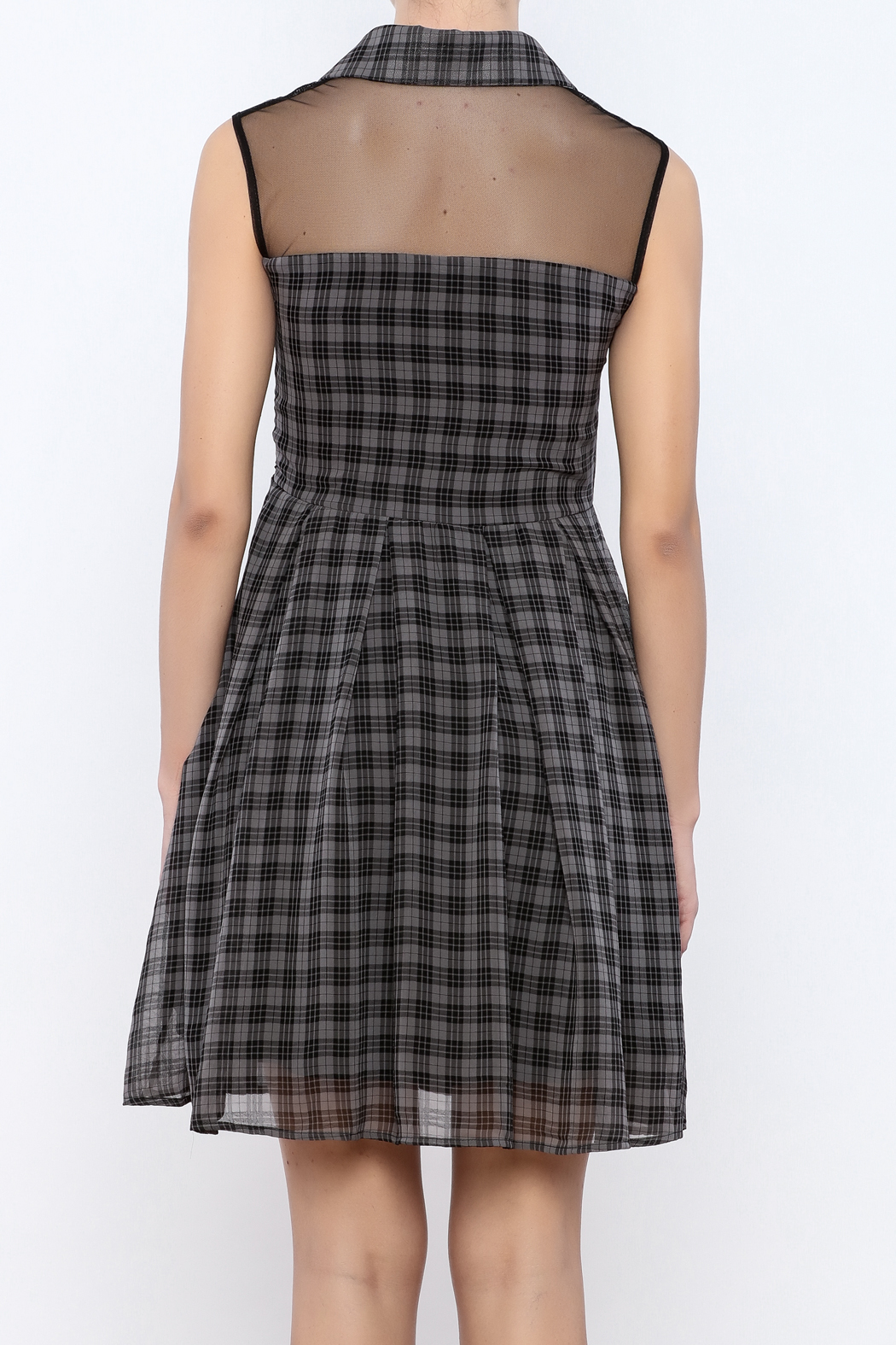 Apricity Willow Check Dress - Back Cropped Image