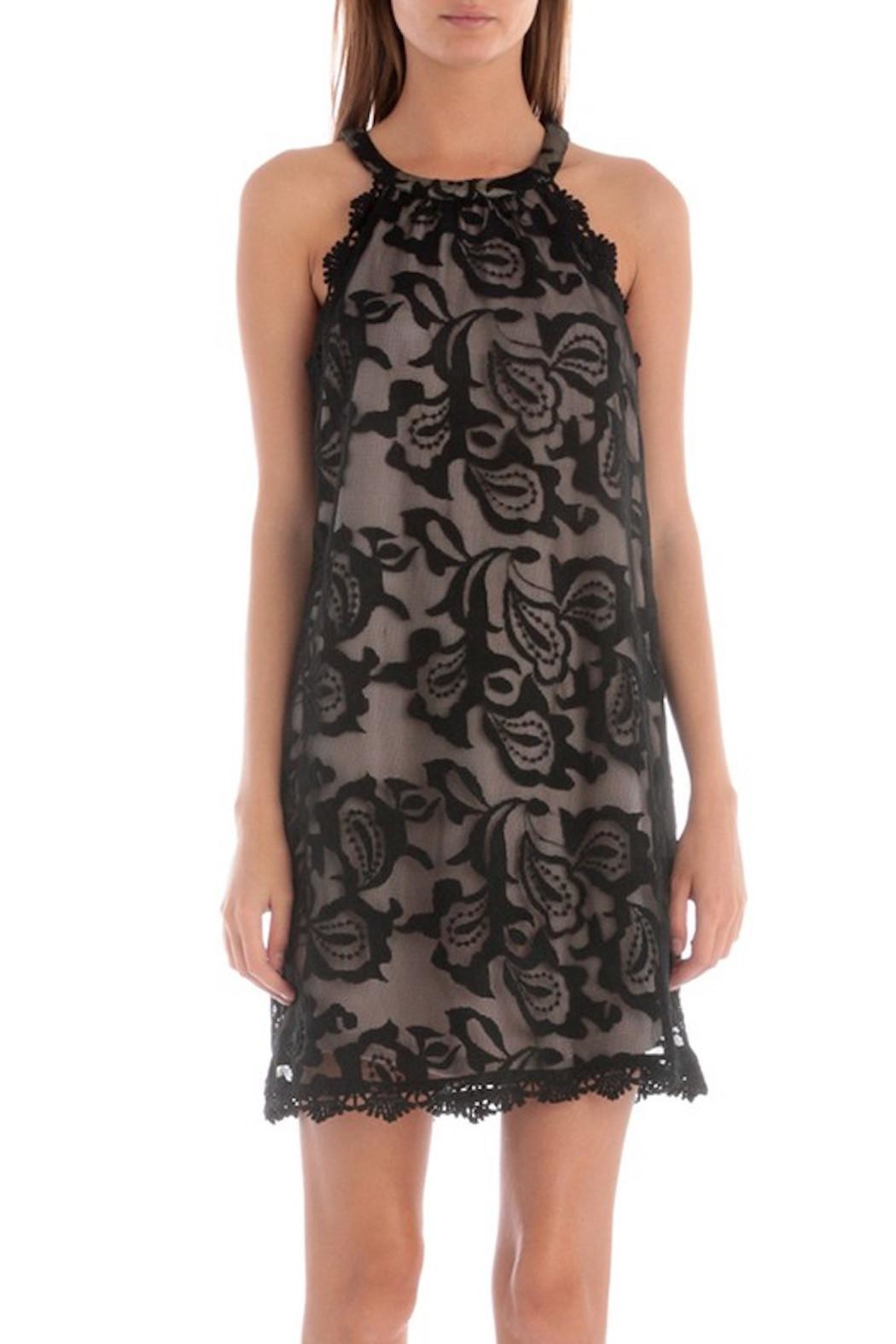 Apricot Lane Scalloped Lace Dress - Front Cropped Image