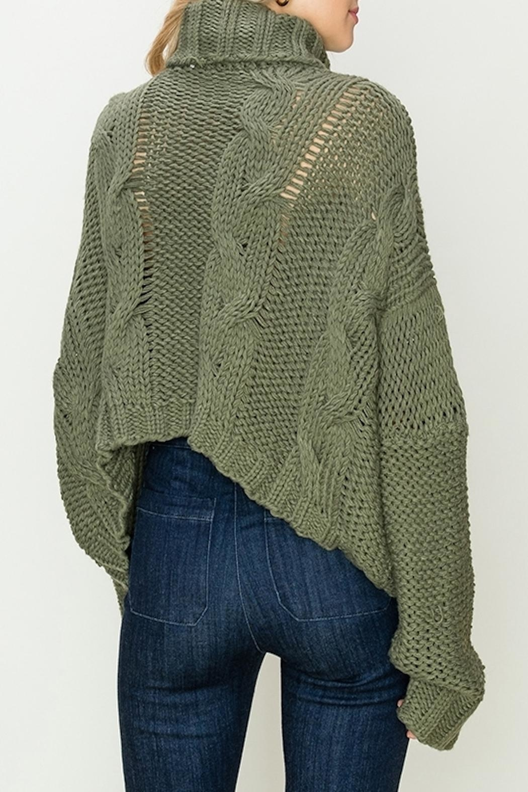 Apricot Lane St. Cloud Duddley Sweater Olive - Front Full Image