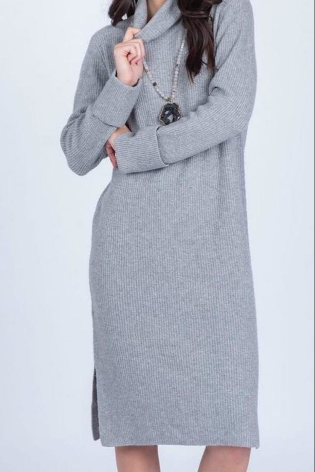 Apricot Lane St. Cloud Ribbed Sweater Dress - Front Cropped Image