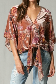 Apricot Lane St. Cloud Velvet Burnout Top - Front cropped