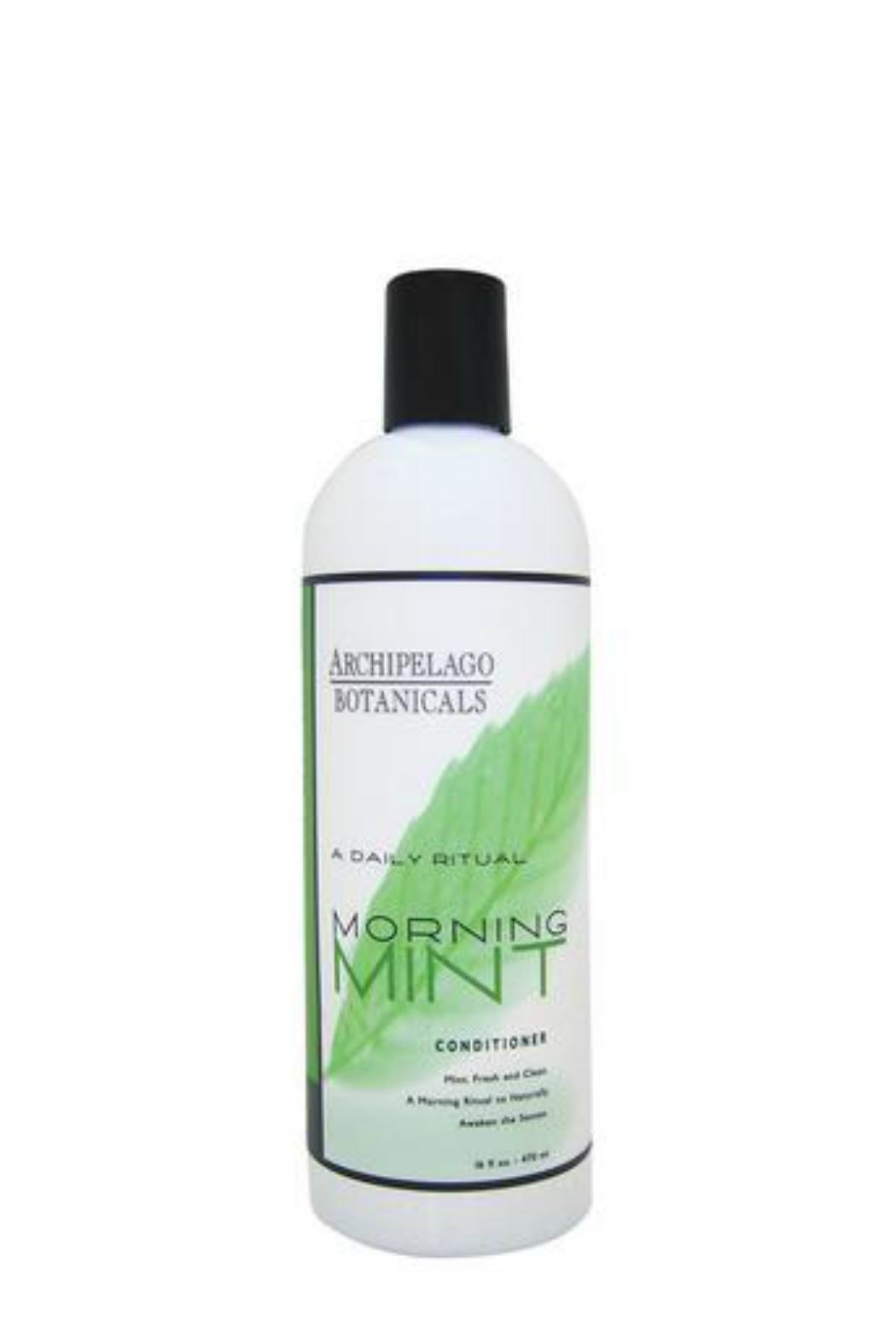 Archipelago Botanicals Mint Hair Conditioner - Front Cropped Image