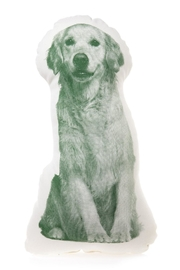 Areaware Golden Retriever Pillow - Product Mini Image