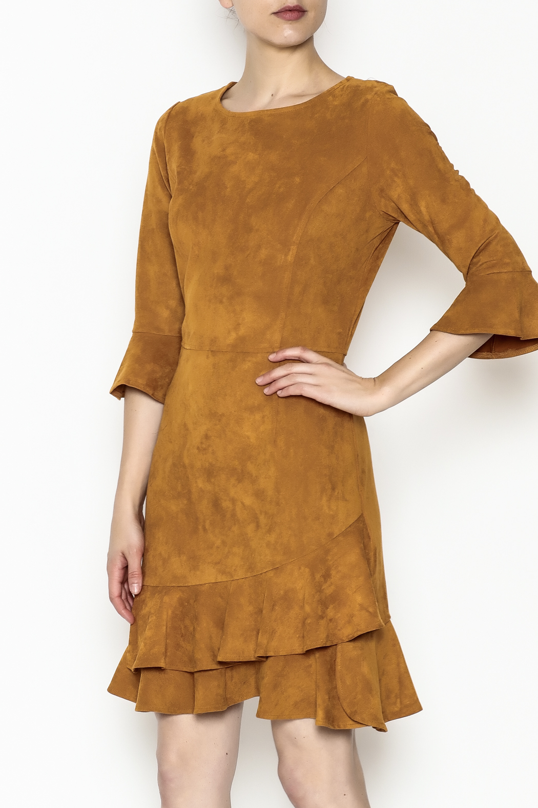 Areyah Faux Suede Dress - Main Image