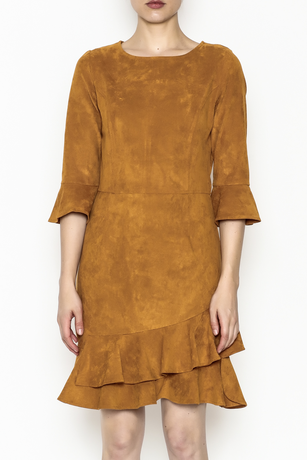 Areyah Faux Suede Dress - Front Full Image
