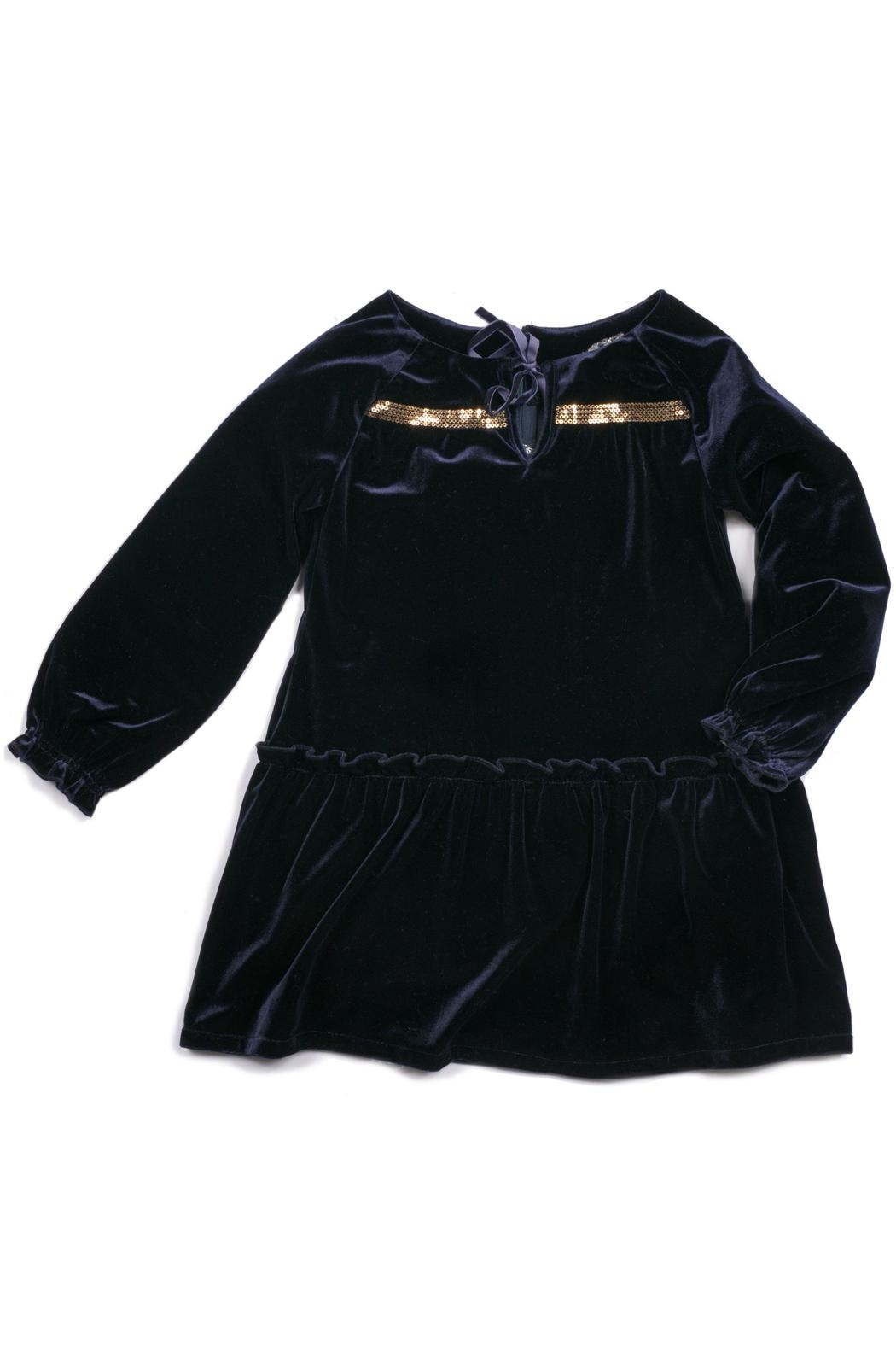 Egg  by Susan Lazar Aria Velvet Dress - Front Cropped Image