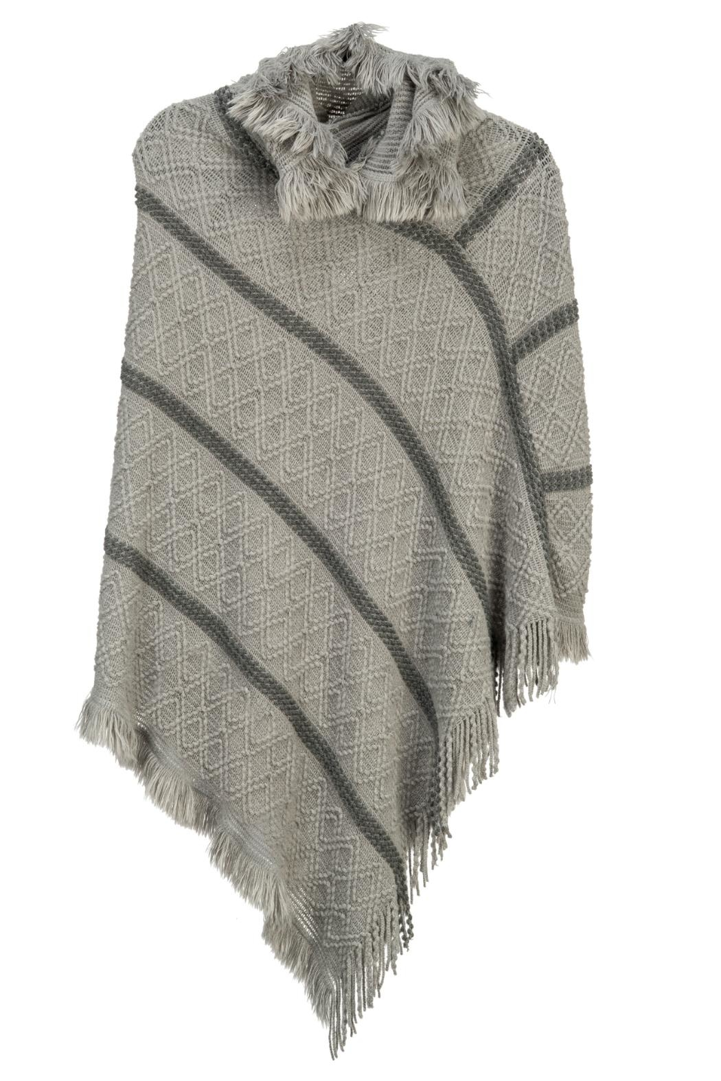 Arianna Hooded Knit Poncho - Front Cropped Image