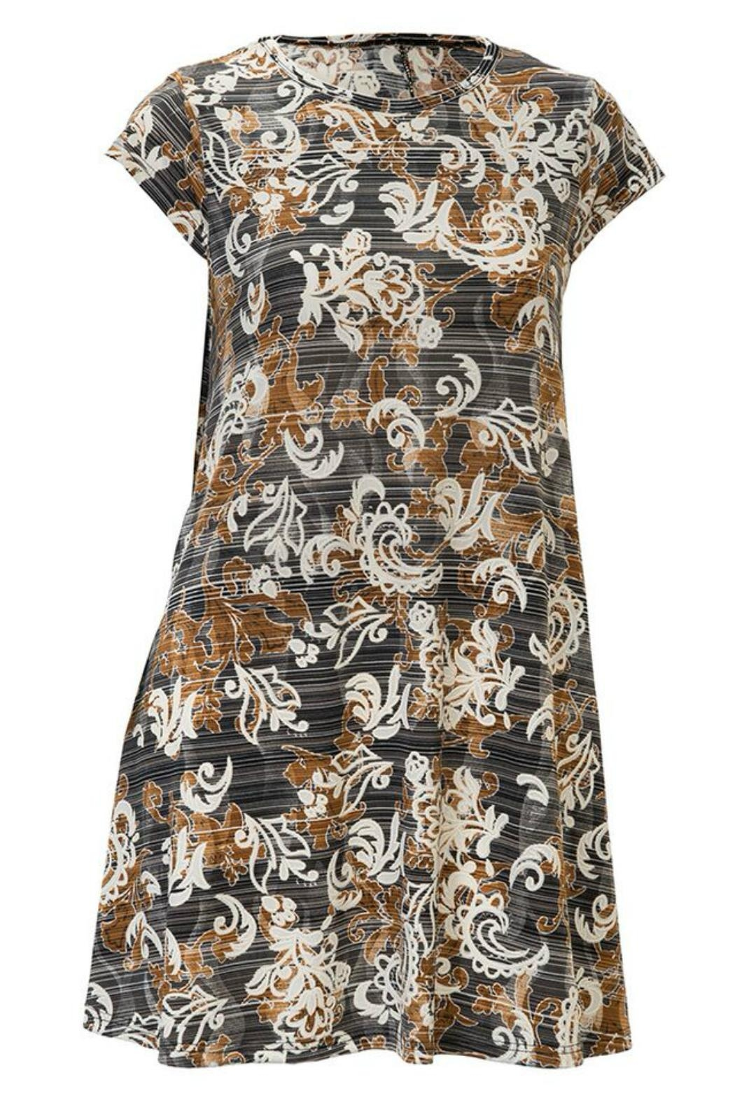 Arianna Print Tunic/dress - Front Cropped Image