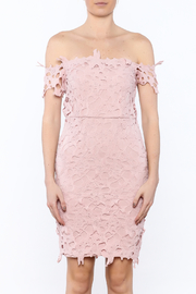 Ark & Co. Pink Crochet Dress - Side cropped