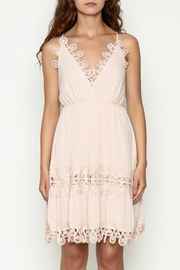 Ark & Co. Crochet Dress - Front full body