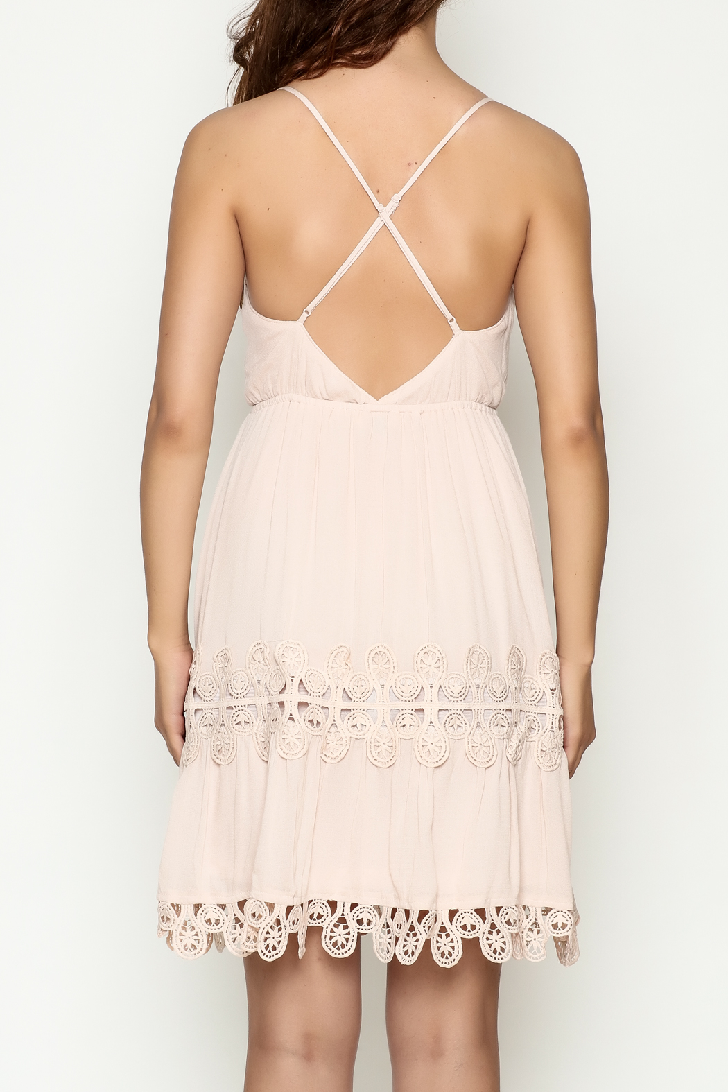Ark & Co. Crochet Dress - Back Cropped Image