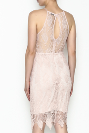 Ark & Co. Lace Bodycon Dress - Back cropped