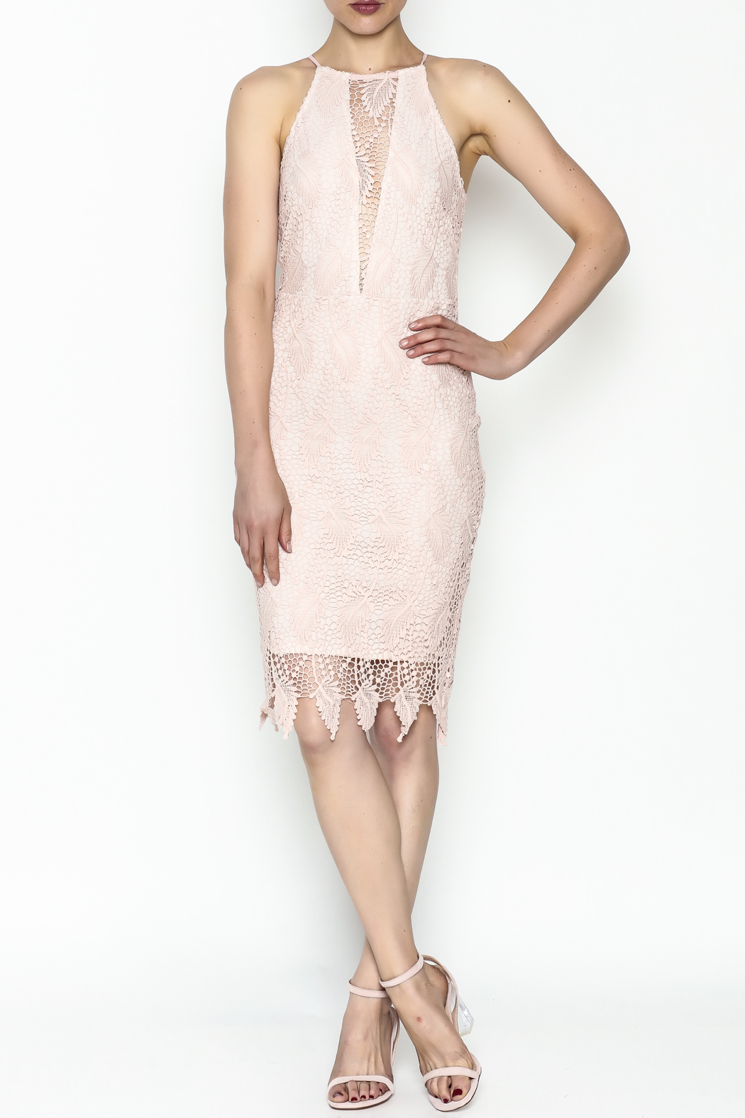 Ark & Co. Lace Bodycon Dress - Side Cropped Image