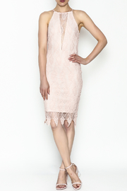 Ark & Co. Lace Bodycon Dress - Side cropped