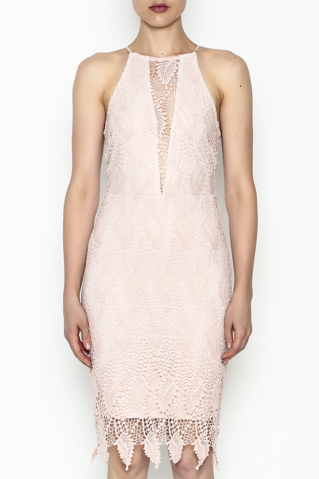 Ark & Co. Lace Bodycon Dress - Front Full Image