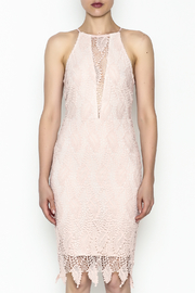 Ark & Co. Lace Bodycon Dress - Front full body